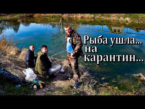 О само изоляции в г. Георгиевске и не фартовой рыбалке