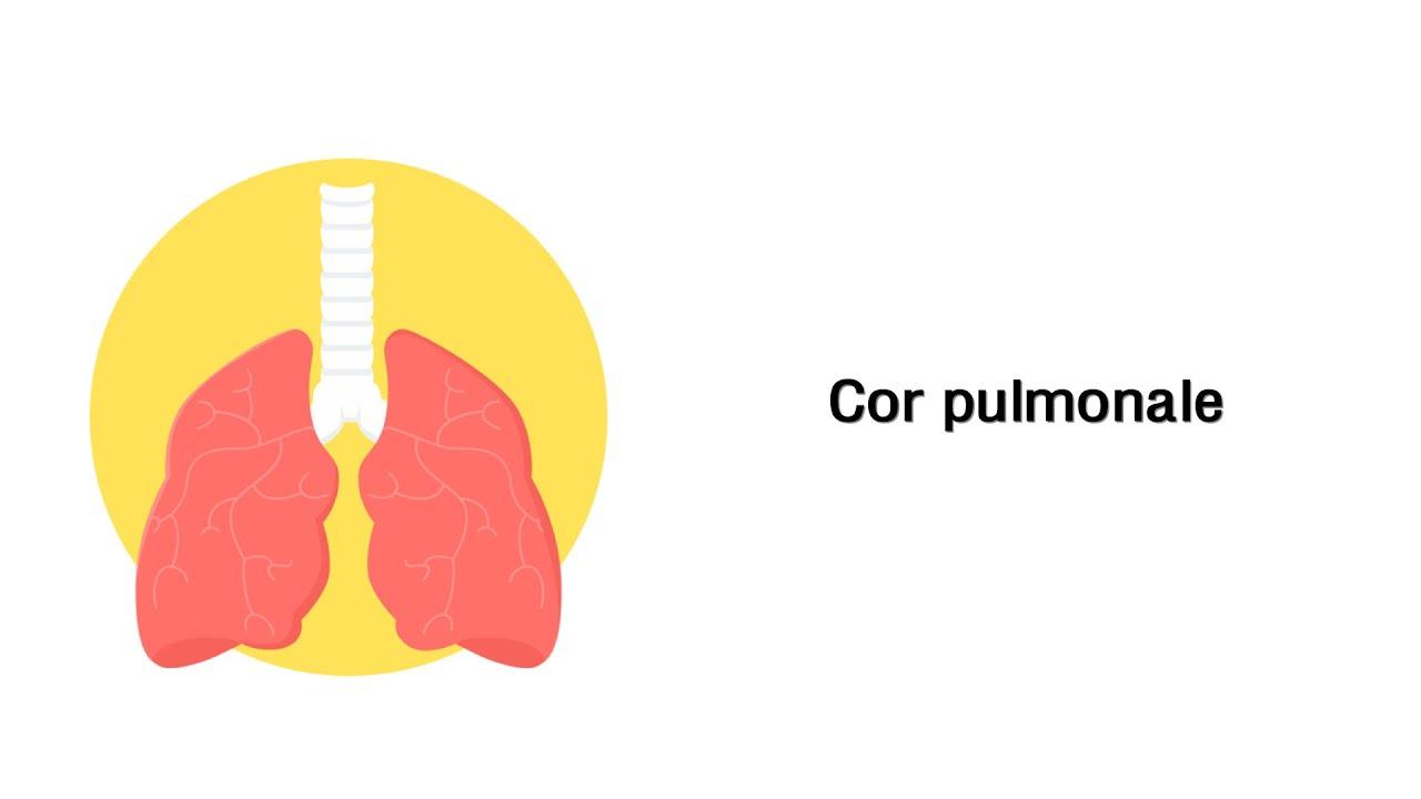 Cor pulmonale - Erkrankungen der Atemwege - YouTube