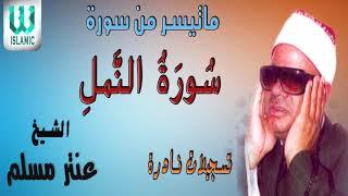 AlShaikh Antar Musalam -  Soret Al Naml / الشيخ عنتر مسلم - سورة النمل