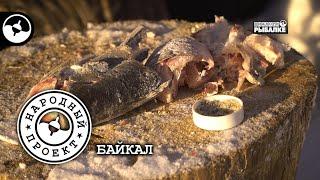 Зимняя рыбалка на Байкале Хариус Народный проект