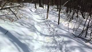 Meech Lake Hike 3