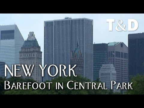 New York City Guide: Barefoot in Central Park - Travel & Dis