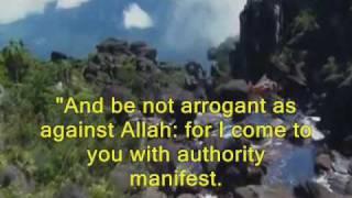 Video Holy Quran - Chapter 44 Ad Dukhan (The Smoke) sheykh Mahir Al-Muaiqely download MP3, 3GP, MP4, WEBM, AVI, FLV April 2018