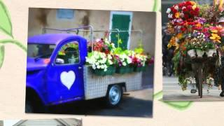 International Flower Delivery Across The Globe