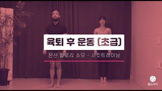 [맨몸운동] 왕초보를 위한 육퇴 후 운동?( 육아맘다이…