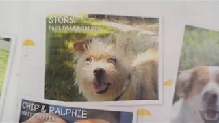 """DSCN6538: Our Dog """"Story"""" in Dogster Magazine 4/21/2020 Issue."""