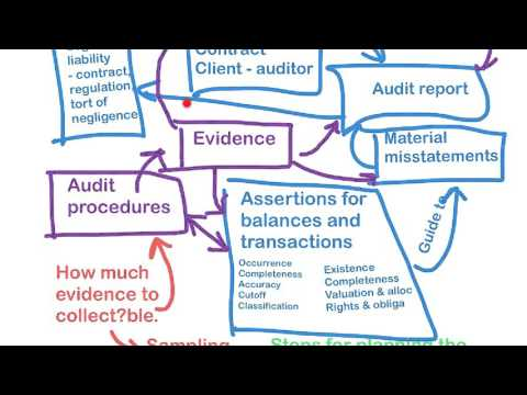 22522 Autumn Session 2016 - Topic 5 - Audit planning and documentation