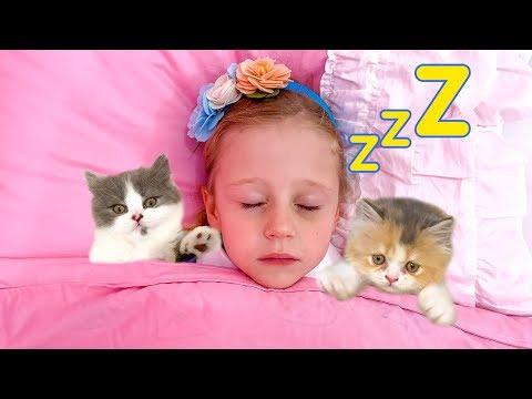 Настя и её обычный день с балованными котятами