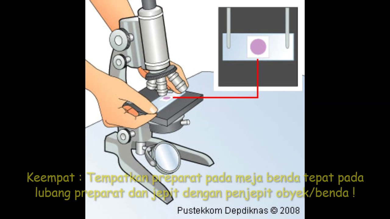 tutorial cara menggunakan mikroskop cahaya