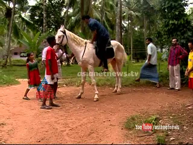 Boy having horse: a horse lover story from Kozhikode: Asianet News Special 18th October 2014