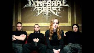 Cerebral Bore - Horrendous Acts Of Iniquity (OFFICIAL LYRICS)