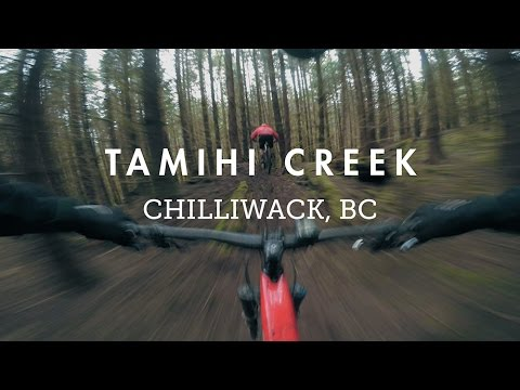 Mountain Biking Tamihi Loam with the NOBL Wheels crew | A green wonderland