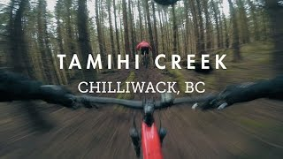 Mountain Biking Tamihi Loam with the NOBL Wheels crew | A green wonderland