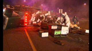 Millions Of Honeybees Swarm I-5 As Truck Full of Bee Hives Crashes