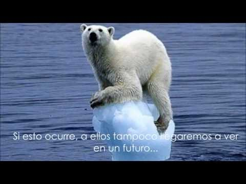 Reflexión sobre el cuidado del medio ambiente