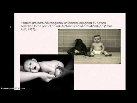 History of Anthropology: Ethnopediatrics