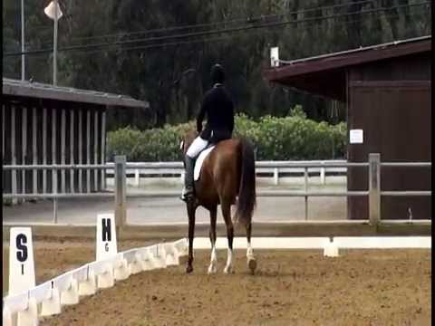 LADY SAVANNAH, Santa Barbara May 17, 2015, Training level Test 3 - 66.591&