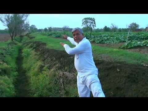 Water Conservation Thru Trenches Natural Farming by Subhash