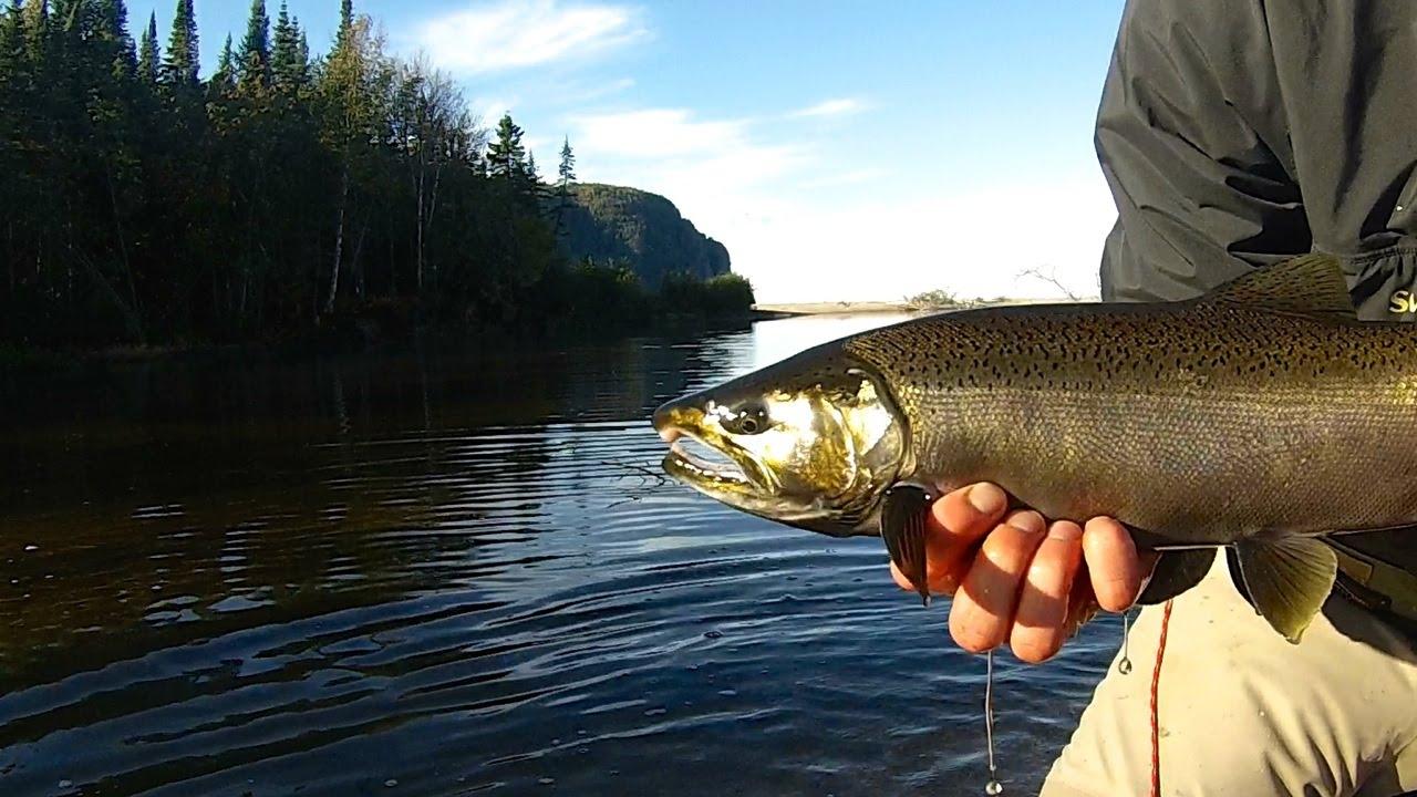 Lake superior coho steelhead 2017 01 25 for Fishing lake superior