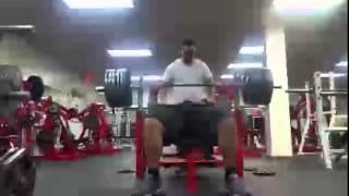 Джулиус Мэддокс  США   жим лёжа без экипировки   290 кг на 2 раза