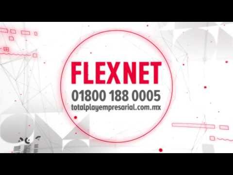 FLEXNET - Totalplay Empresarial