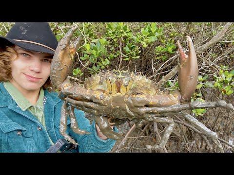 MONSTER MUDCRAB & Flathead Catch & Cook! SOLO HUNT Crabpot Vs Barehands