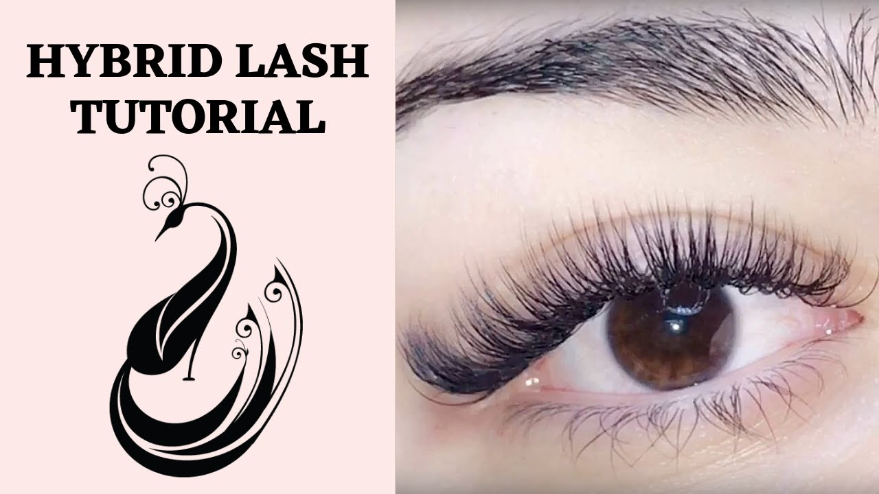 Hybrid Eyelash Extension Tutorial C & D Curl | Is it OK to mix curls? |  Eyelash Extensions 101