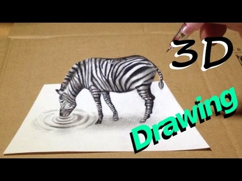 Epic 3D drawing - Zebra Illusion