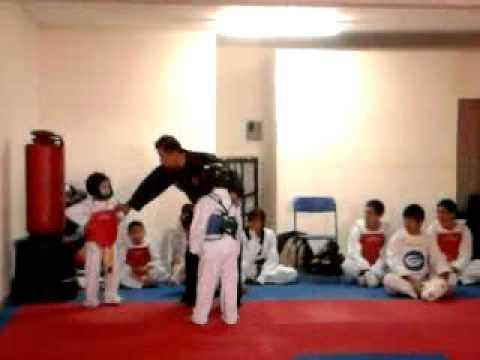 jaguar taekwondo maestro cano luis paul meneses. c...