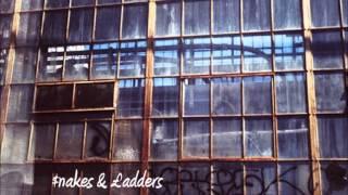 Silver & Gold - Fat Freddy's Drop