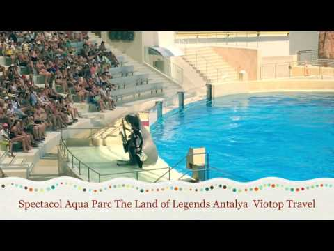 Aqua Theater show in Land of legends Theme Park Antalya