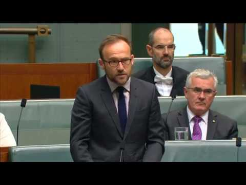 Adam Bandt calls for protection from a potential 'trigger-happy' Trump