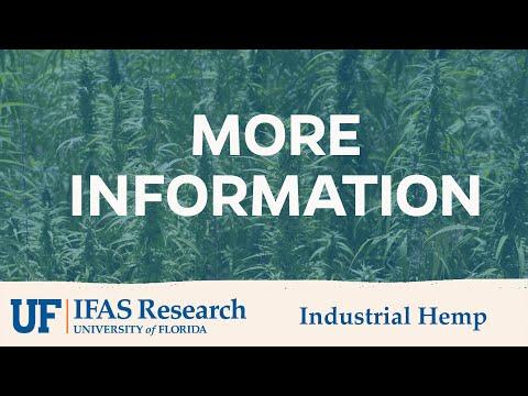 UF/IFAS Industrial Hemp More Information