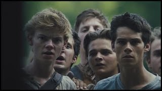the maze runner | ready aim fire