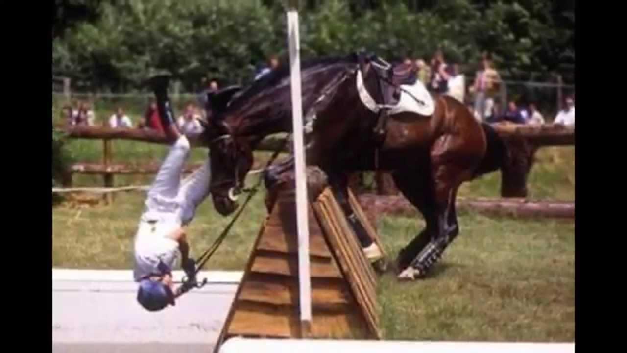 Les plus belles complicit et chute a cheval youtube for Les plus belles douches
