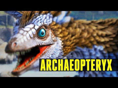 ARCHAEOPTERYX - How to tame/Everything you need to know! - Ark Survival Evolved (Update 247)