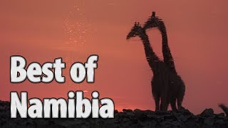 Best of Namibia: Highlights, Unique Scenes, Lot of Safari-Activities / Vacation Travel Guide