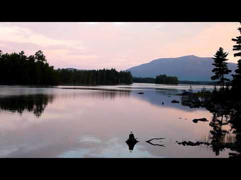 Morning Sounds From Camp (Loon)