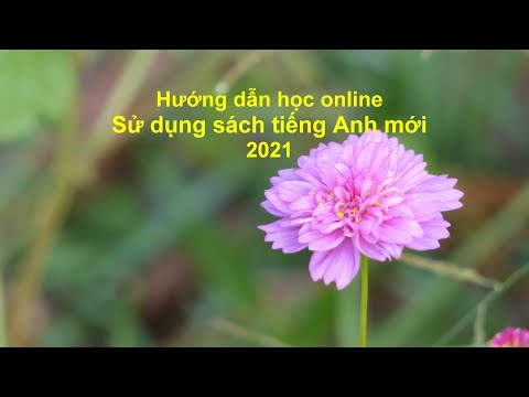 Hương dẫn học online: Sử dụng sách Tiếng Anh mới