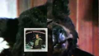 andy williams   Waltz 'Round The Christmas Tree