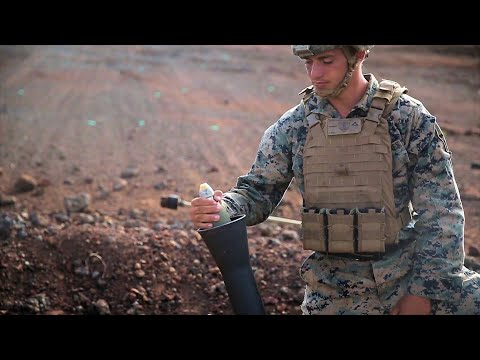 Marines Conduct Fire Support Coordination - 2020
