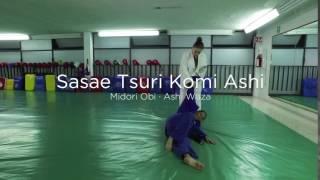 Sasae Tsuri Komi Ashi (Midori Obi · Ashi Waza)