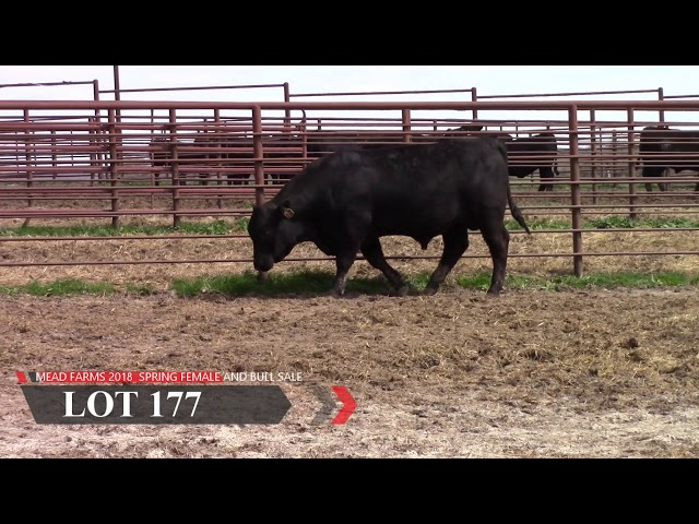 Mead Farms Lot 177