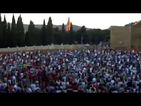 Palio dei Rioni 2013 - Castiglion Fiorentino