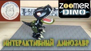 Dino Zoomer Детёныш динозавра интерактивный(Dino Zoomer Динозавр интерактивный http://goo.gl/jFDe9w -перейди по ссылке и узнай больше про этого динозавра Динозавр..., 2015-10-28T11:00:33.000Z)