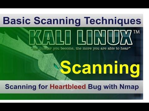 Scanning for Heartbleed bug using Nmap on Kali Linux