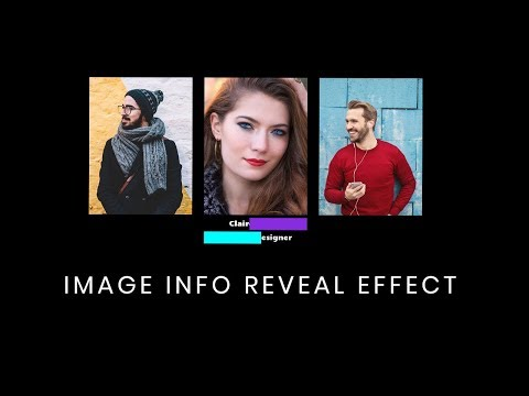 Image Info Box Hover Effect | CSS Text Reveal on Hover Effect