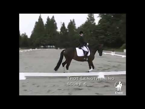 Trot Lengthening With Directives And Scores