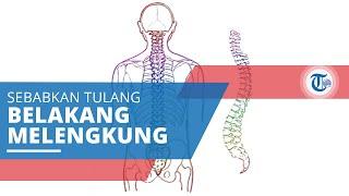 Sakit Tulang Ekor & Punggung..