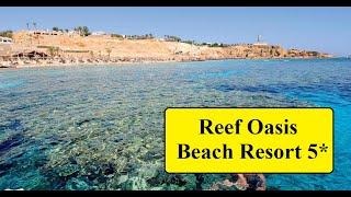 Египет 2020 Обзор отеля Reef Oasis Beach Resort 5